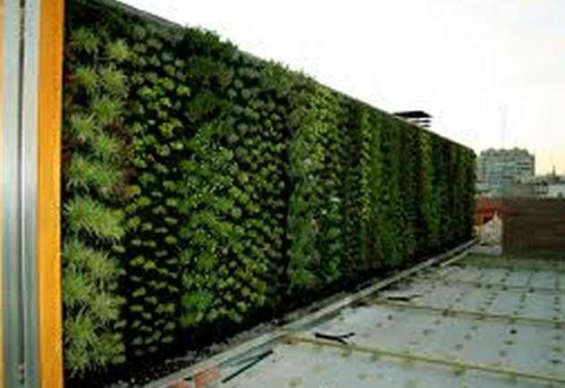 Jardinería vertical descubra cómo funciona