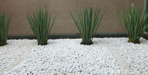Decoración jardines piedras blancas