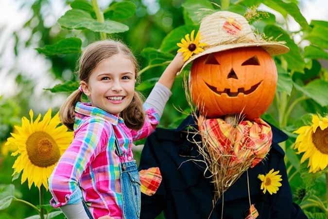 como decorar jardín para Halloween
