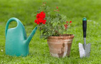 equipos de jardinería
