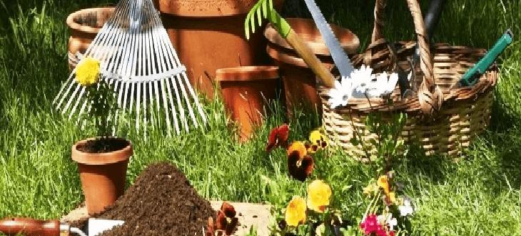 jardinería equipos